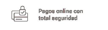 pagos online seguros